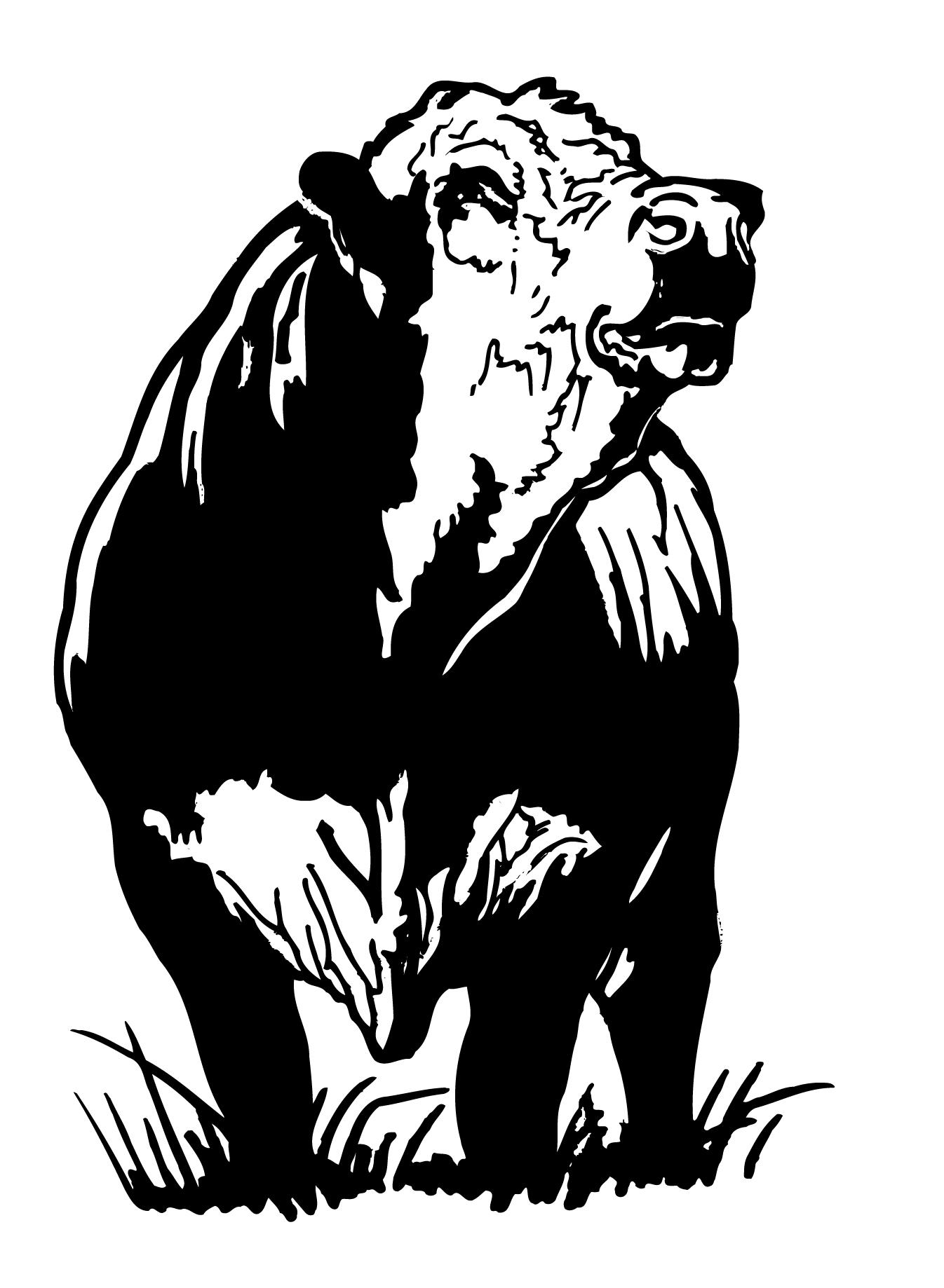 Black bull meeting - 3 part 6