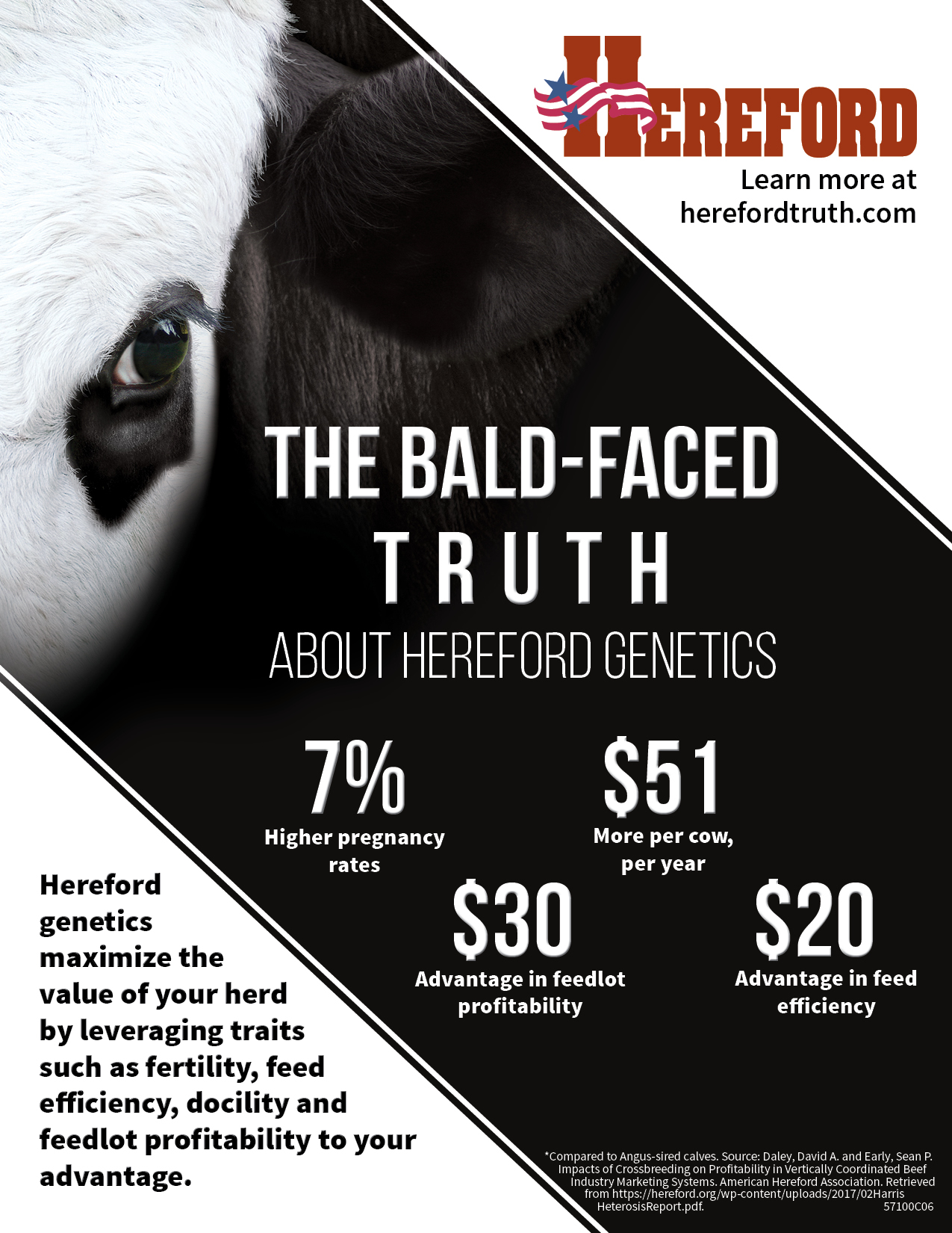 Bald-Faced Truth Full Page Insert