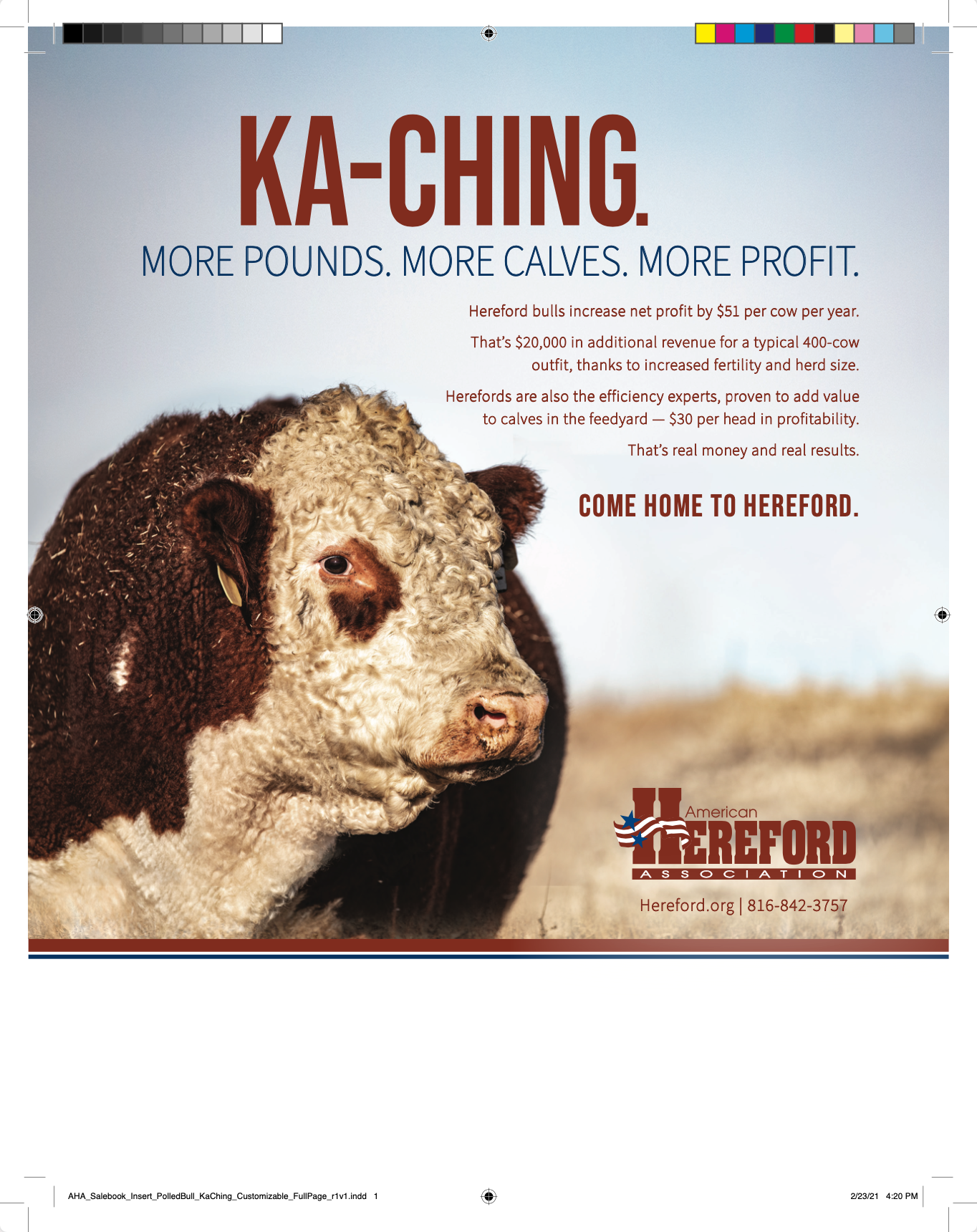 'Polled KaChing' Full Page Insert — With Bleeds